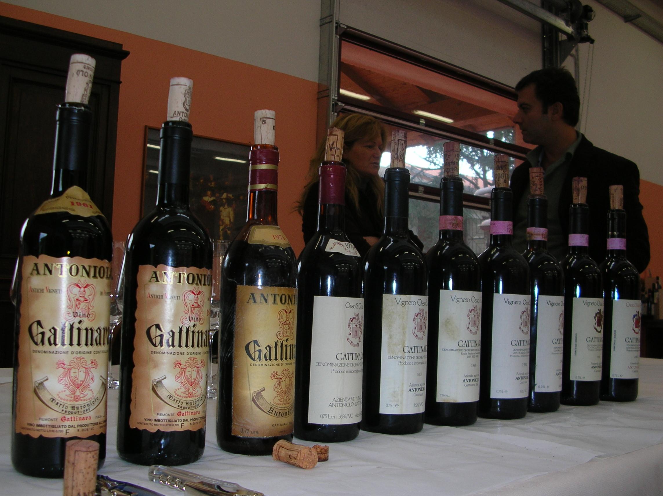 Antoniolo. Il nord Piemonte nella storia
