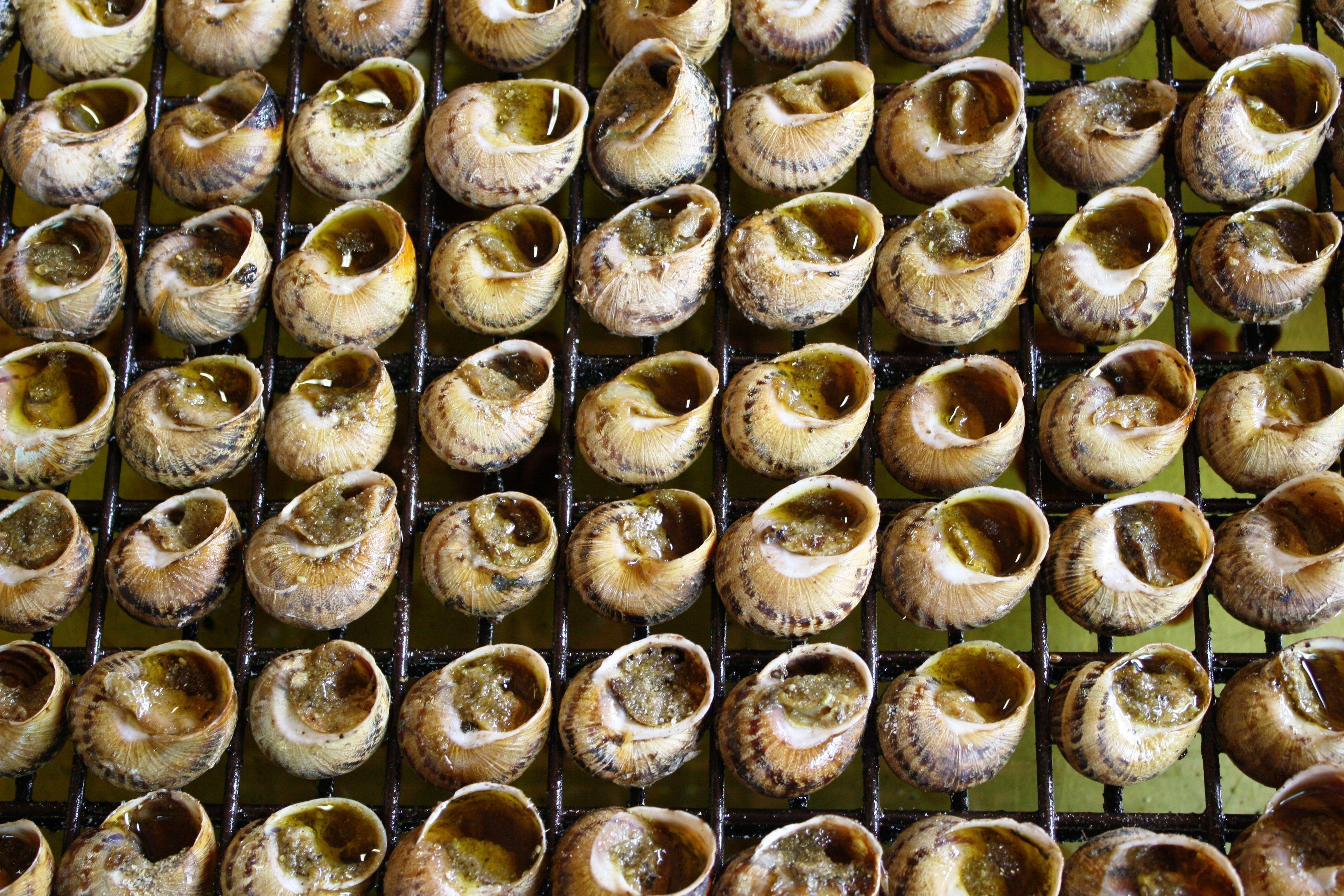 Sulla scia delle lumache. Da Cantalupo a Beaune