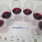 Una finestra sulla Campania del vino