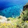 Salina | L'isola dei capperi