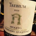 Antonelli | Spoleto Trebium 2014