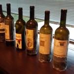 Pillole di Wine Club #2: Orizzontale Fiano di Avellino 2002-2003