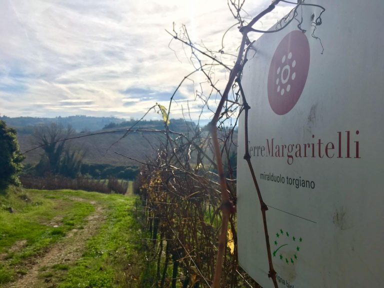 margaritelli-2