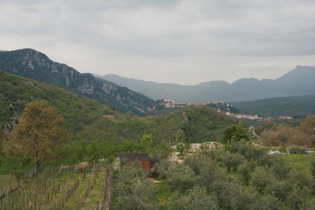 Piaggine (SA), Azienda Agricola Pietro Macellaro