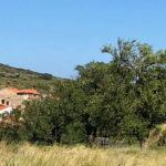 Vino vita mia | In viaggio per il sud della Francia