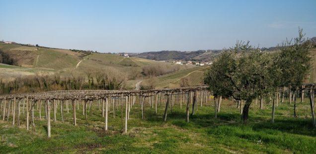 Weekend | Costa dei Trabocchi-Colline Teatine-Maiella (Prima parte)