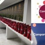 Campania Stories 2020 #2 | La tonica e solare annata 2019